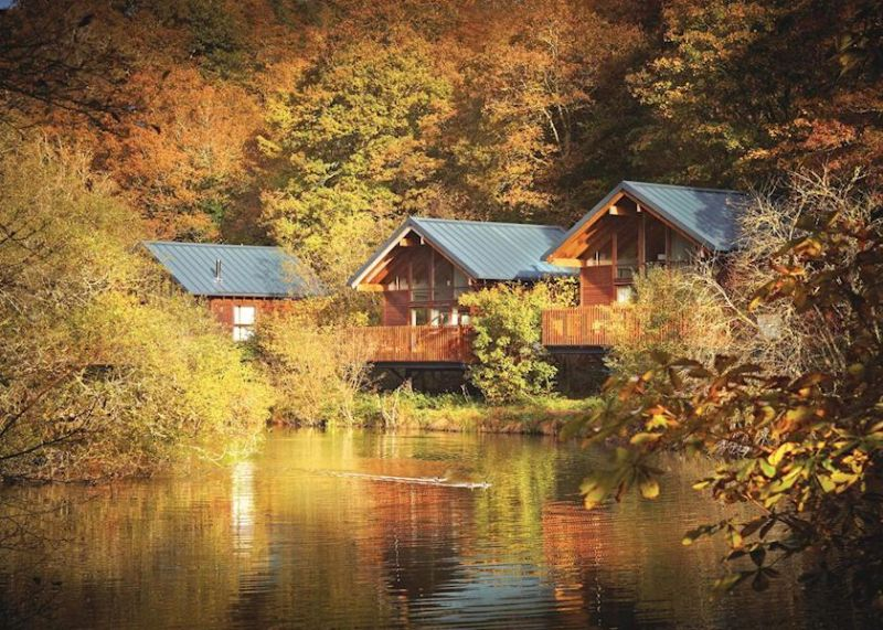 Deerpark Forest Holiday Cottages Bungalows Apartments