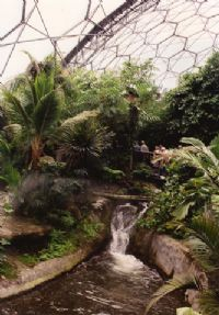 Streams and waterfalls at Eden