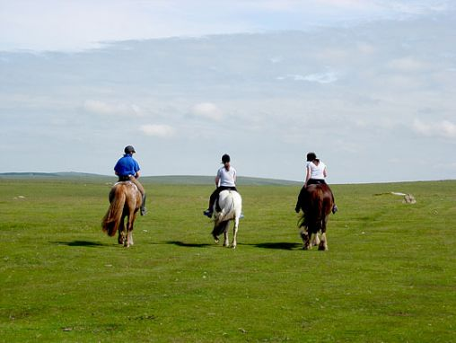 Hallagenna Horse Riding & Equestrian Holidays on Bodmin Moor