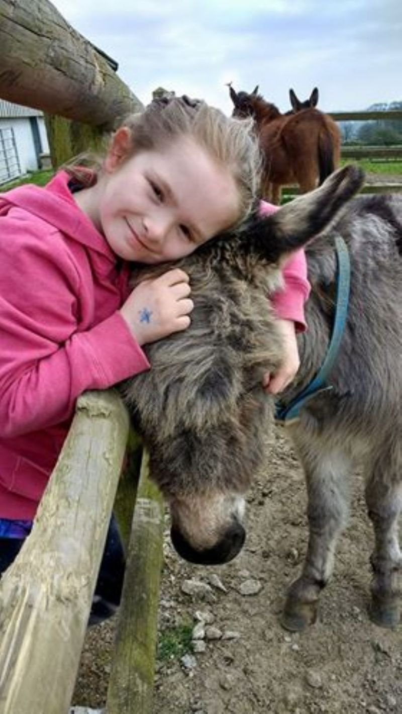 Cuddling a donkey at The Flicka Foundation Donkey Sanctuary