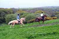 Bosvathick Farm Riding Stables, Horse Riding Centres