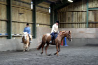 Bosvathick Farm Riding Stables