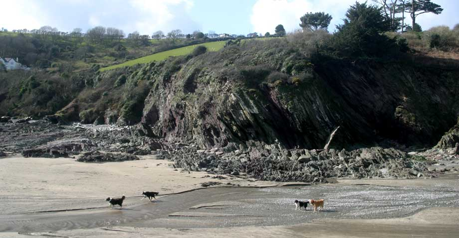 Beaches in Looe and South East Cornwall