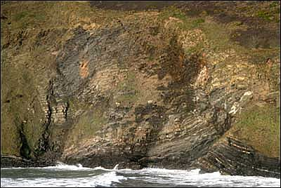 Geological feature at Crackington Haven