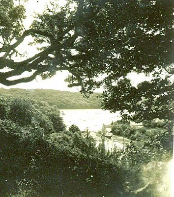 View of creek near Malpas