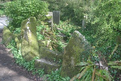 St Keyne's Holy Well