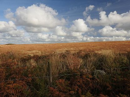 Autumn on the West Penwith Moors