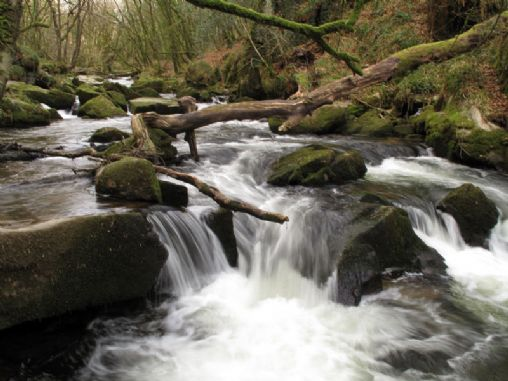Golitha Falls Cornwall, tourist guide & map, events ...