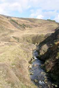 Stream at Marsland Mouth