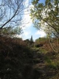 Steeple Woods - Knill's Monument
