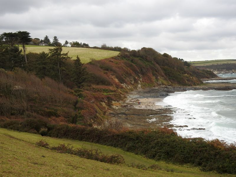 Bream Cove from the Coast Path