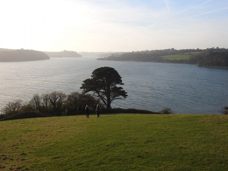 Helford to Maenporth - Walk - Cornwall Coast Path