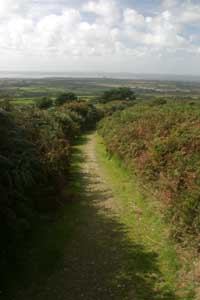 Footpath to Tregonning Hill